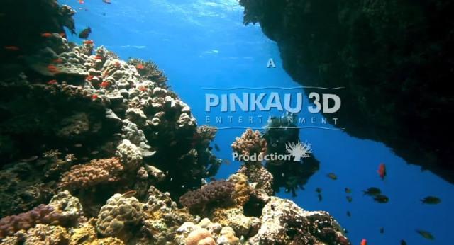 YouTube 3D: Ocean Dive 3D («Погружение на дно океана 3D»)