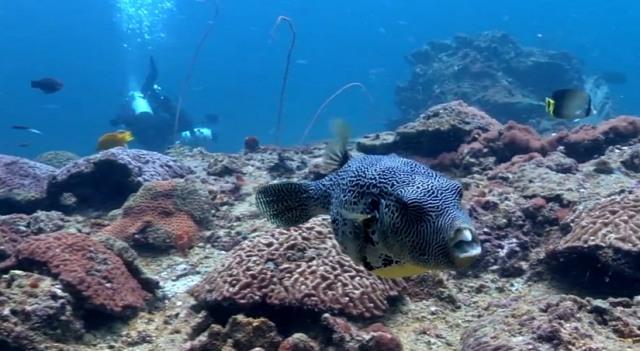 Остров Пхукет в YouTube 3D-ролике