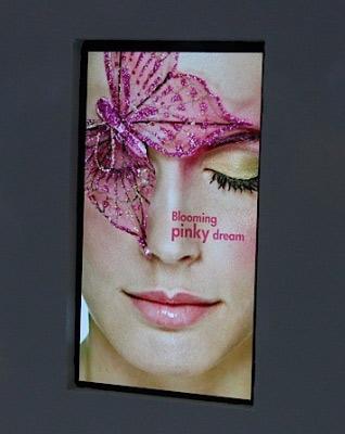 LG Display привлекла внимание аудитории показом 5-дюймовой Full HD ЖК-панели для смартфонов