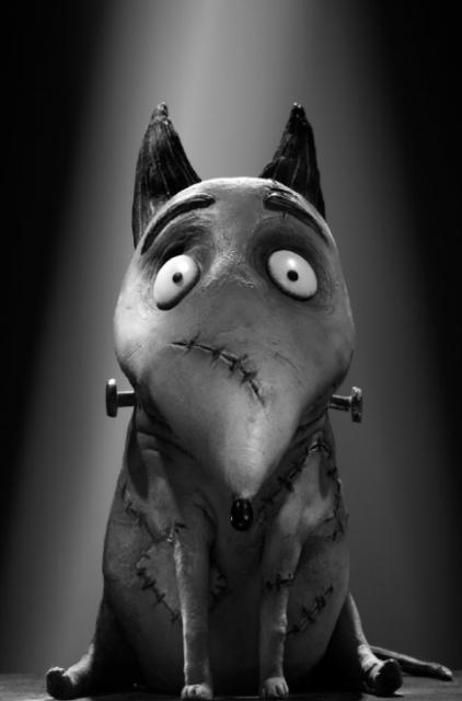 Спарки из 3D-мультфильма «Франкенвини» (Frankenweenie)