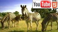 Любителям путешествий – YouTube 3D-ролик о Южной Африке