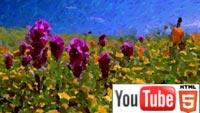 Живопись в стиле Ван Гога на YouTube стерео 3D