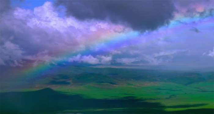 3D Origins: аэросъемки природы в YouTube стерео 3D-видео