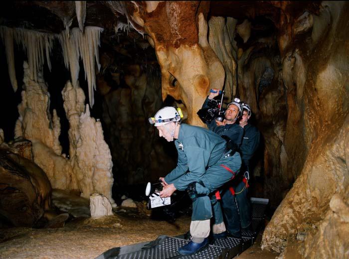 Дайджест: 3D-фильм «Пещера забытых снов» (Cave of Forgotten Dreams)