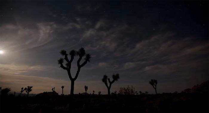3D-видео «3D Desert» из коллекции Moving Art
