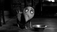 Blu-ray 3D-диски «Франкенвини» – уже в феврале 2013!