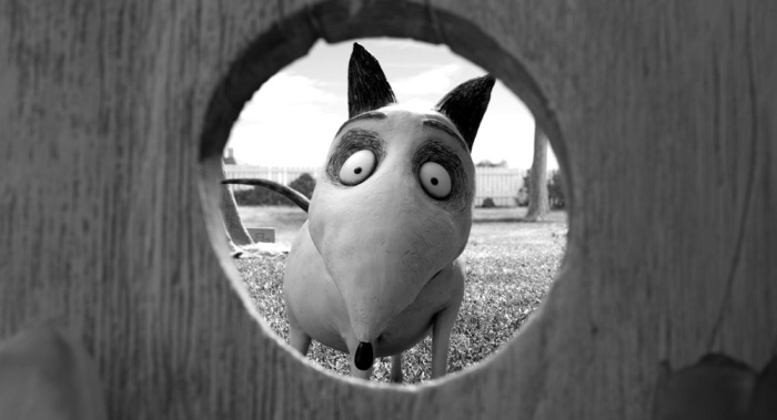 Blu-ray 3D-диски «Франкенвини (Frankenweenie) выйдут 5 февраля 2013