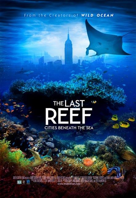 Красоты подводного мира – в стерео документалке «Последний риф 3D» (The Last Reef 3D)