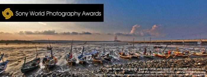Sony World Photography Awards SWPA 2013: объявлен победитель в 3D-номинации