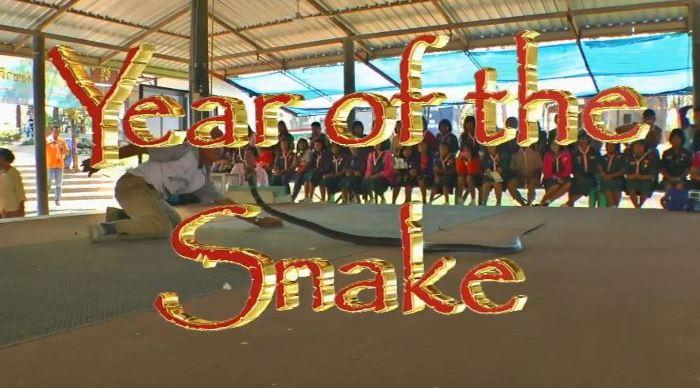 "Шоу со змеями в новом трёхмерном видеоролике ""Year of the Snake"" на YouTube стерео 3D"