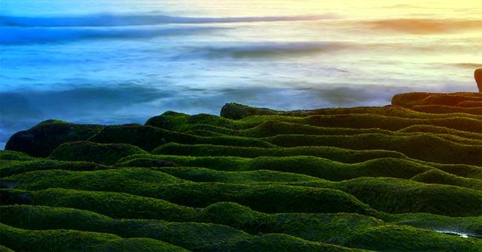 Зелёный риф Лаомей: красивейшие пейзажи на YouTube 3D