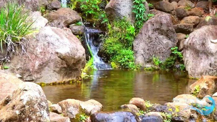 Природа Гавайев в стерео: подборка YouTube 3D-видео