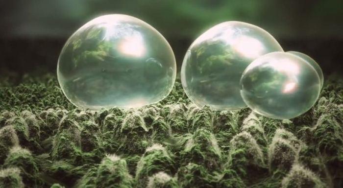 3D-фильм «Загадки невиданной планеты» «Mysteries of the Unseen World» в Американском музее естественной истории (American Museum of Natural History)