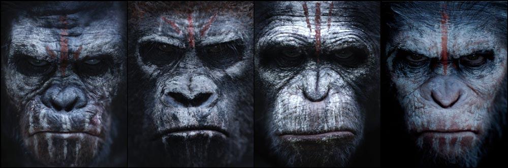 когда выйдет 3 сезон 12 обезьян