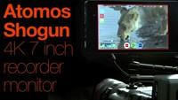 Внешний 7-дюймовый 4K/HDMI монитор-рекордер Atomos Shogun