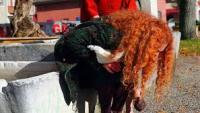 Прощай, речь 3D (Adieu au langage): драма Жана-Люка Годара о взаимопонимании