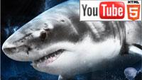Хищники океанов 3D: 58-минутная документалка на YouTube