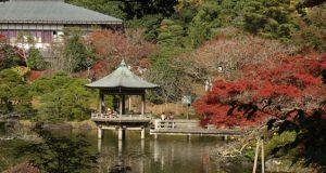 Японский парк Нарита на YouTube 3D