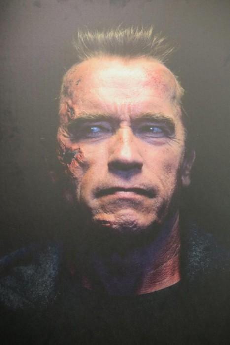 Арнольд Шварценеггер (Arnold Schwarzenegger) в образе T-800