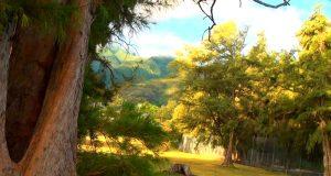 Гавайи на YouTube 3D: подборка трёхмерного релакс-видео